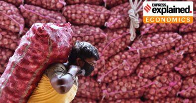 onion shortage in nepal