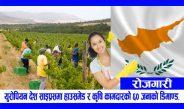 युरोपियन देश साइप्रसमा हाउसमेड र कृषि कामदारको ६० जनाको डिमाण्ड, तलब ४३-६२ हजार सम्म